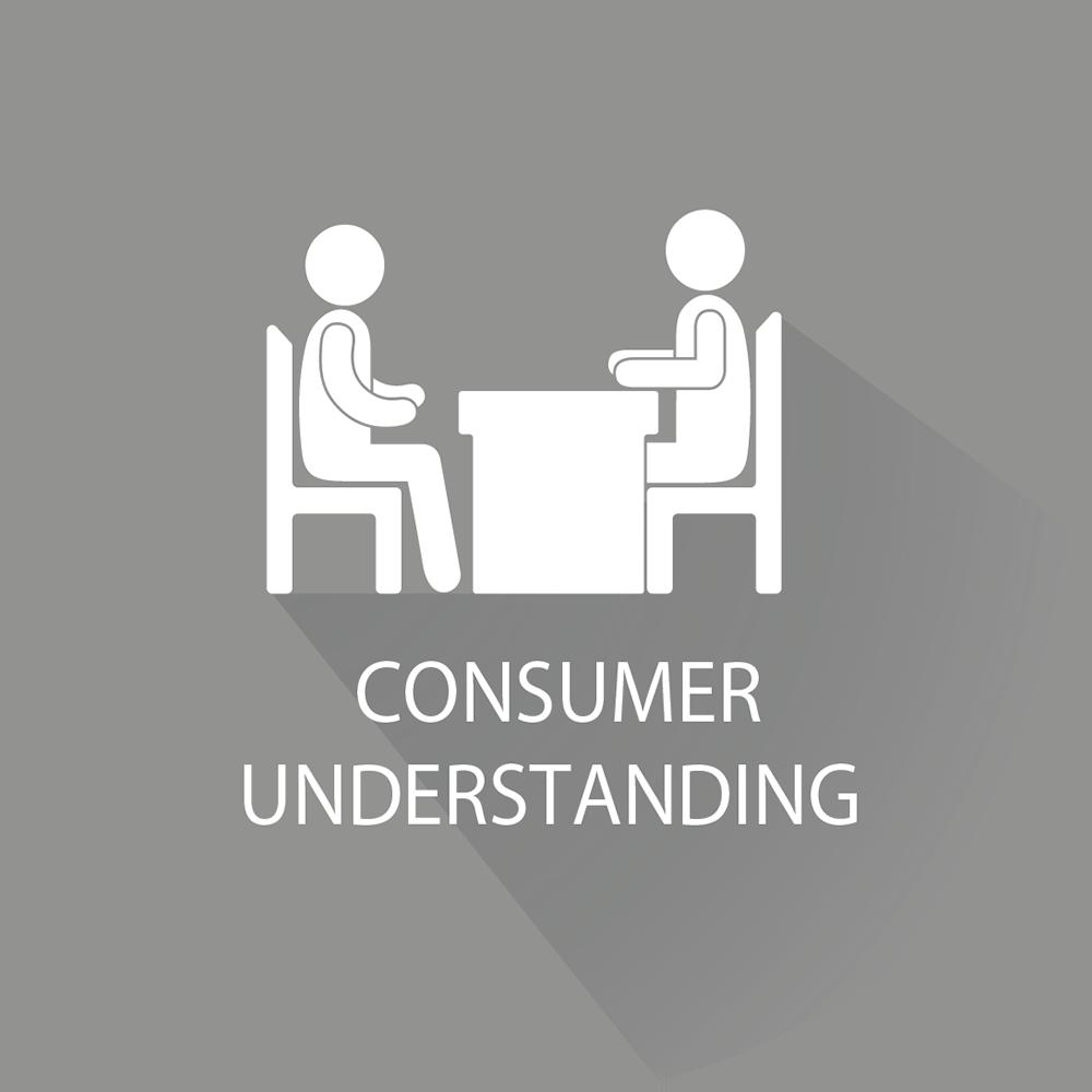 Consumer Understanding Icon