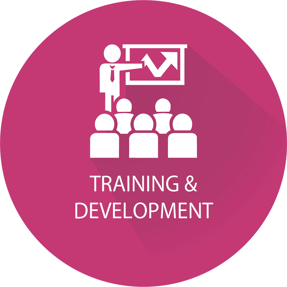 Training & Development Icon